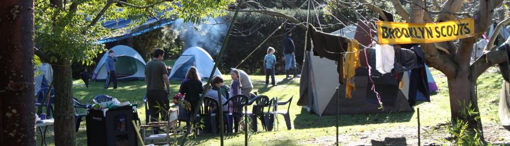 Brooklyn Scouts, Wellington